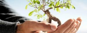 Miljöarbete-ISO-14001